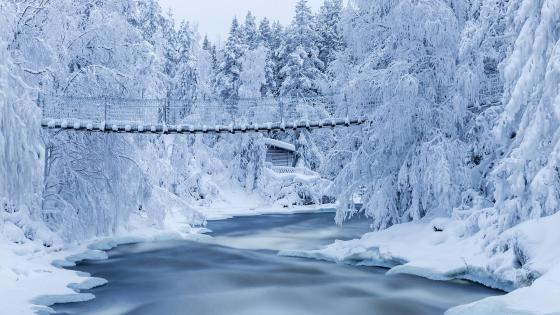 Kitkajoki River (Oulanka National Park) wallpaper