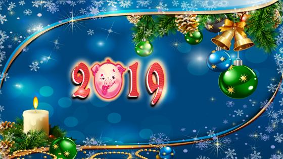 The year of pig - 2019 wallpaper