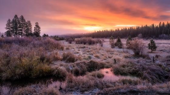 October Dawn (Placerville, Idaho) wallpaper
