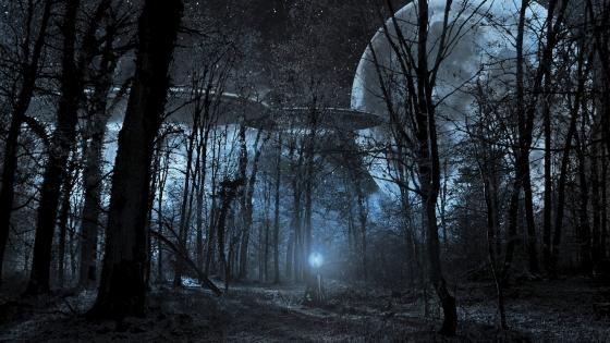 Flying saucer in the forest at full moon wallpaper