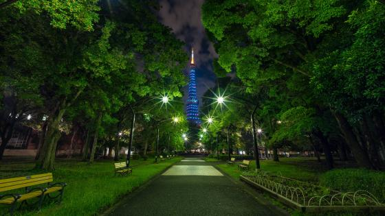 The blue Tokyo Tower by night wallpaper
