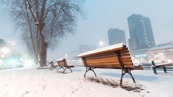 Snowy benches wallpaper