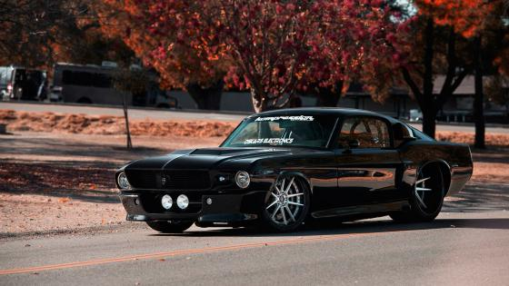 1967 Ford Mustang wallpaper
