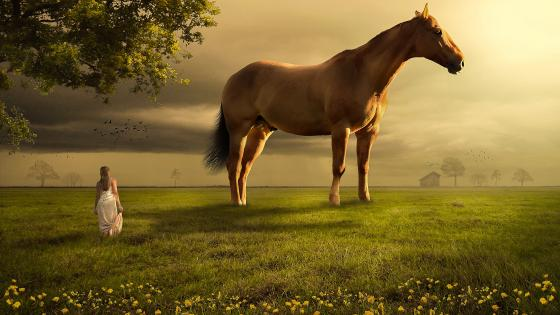 Giant horse with a woman wallpaper