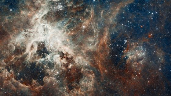 Hubble's Panoramic View of a Turbulent Star-making Region wallpaper