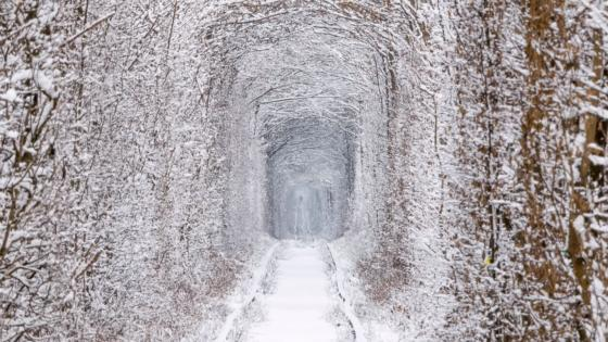 Tunnel of Love at wintertime (Ukraine) wallpaper