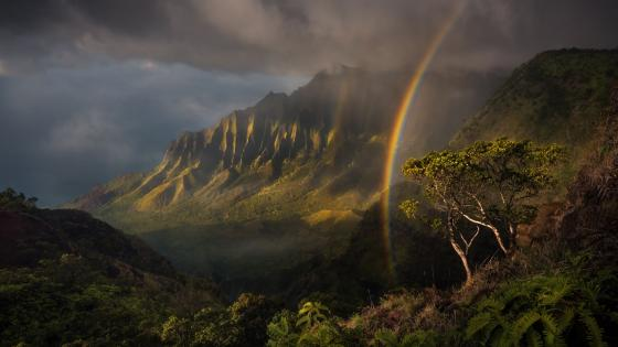 Rainbow at Kalalau Valley (Hawaii) wallpaper