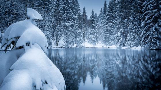 Snowy landscape reflection wallpaper