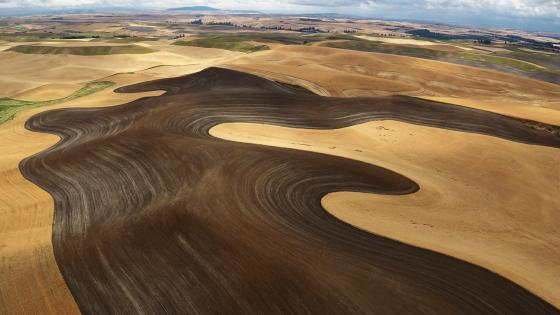 Palouse hills aerial photography wallpaper