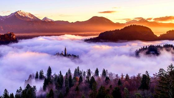 Bled Island in the mist wallpaper