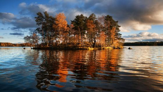 Island on the Ladoga Lake wallpaper
