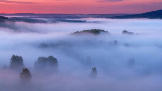 Fog in the Southern Urals wallpaper