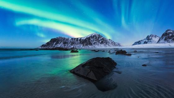 Polar lights in Lofoten wallpaper