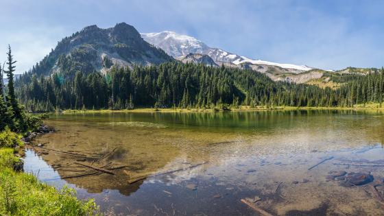 Mineral Lake (Mount Rainier National Park) wallpaper