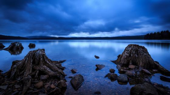 Timothy Lake in blue hour wallpaper