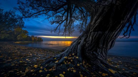Autumn sunset on St. Bernard Island (Refuge faunique Marguerite-D'Youville) wallpaper