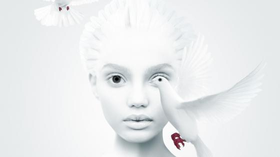 White dove and a white girl wallpaper