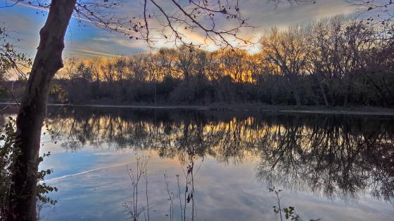 Reflective Sunset wallpaper