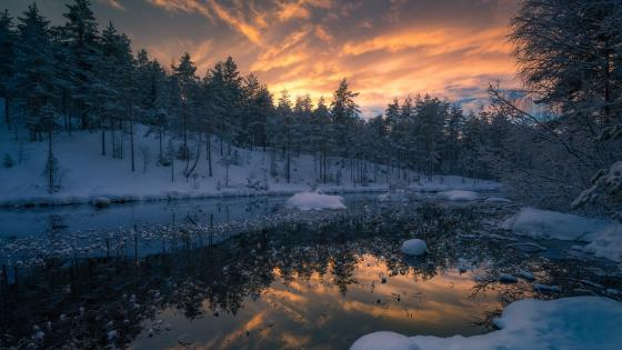 Winter landscape from Ringerike wallpaper