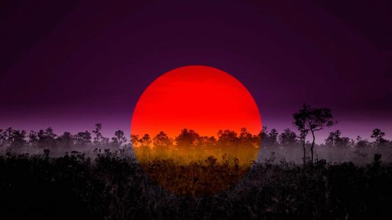 Sunset Landscape Evening wallpaper