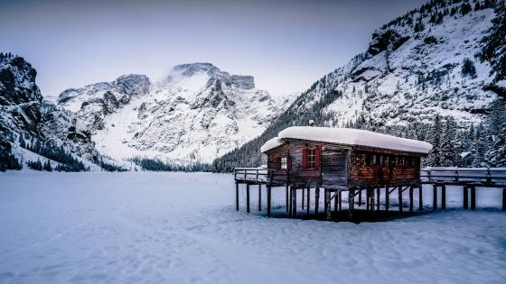 Frozen Pragser Wildsee wallpaper