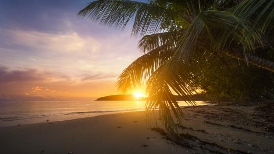 Long bay of Anse Boileau (Seychelles) wallpaper