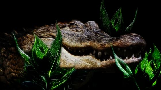 Fractalius crocodile wallpaper