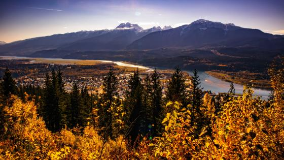 Fall In Revelstoke wallpaper