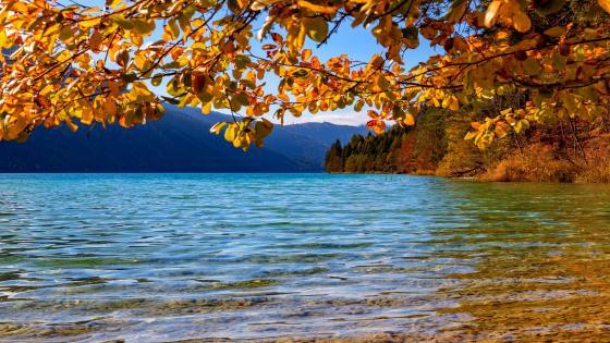 Austria, Lake Weissensee wallpaper