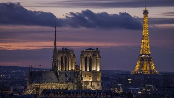 Notre Dame and Eiffel Tower at night wallpaper
