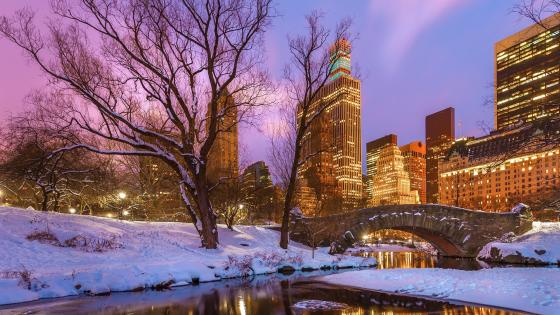 Gapstow Bridge (Central Park) in winter wallpaper