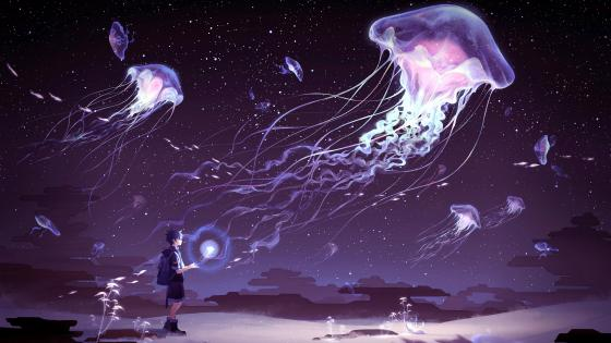 Jellyfish flying in the night wallpaper