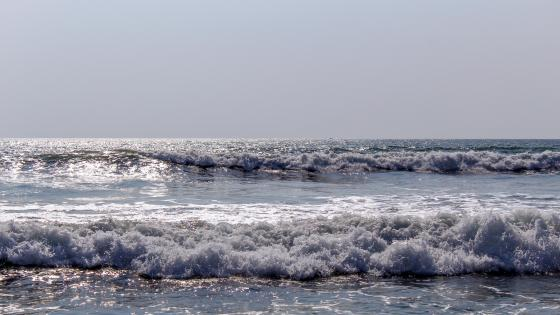 Sea Waves on the Panadura Beach wallpaper