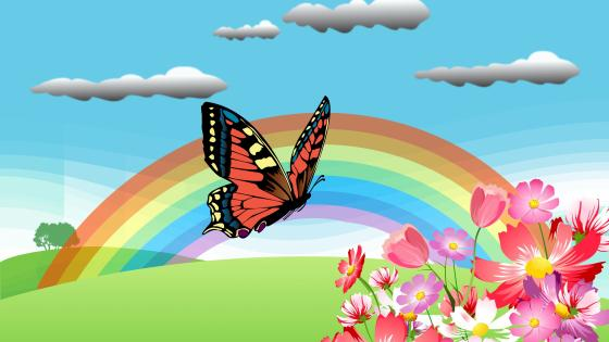 Butterfly and Rainbow wallpaper