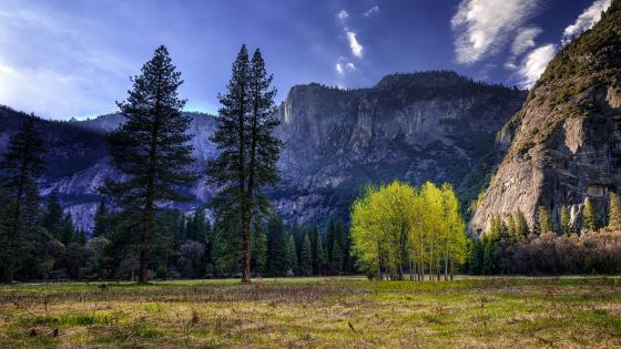 Yosemite National Park landscape wallpaper