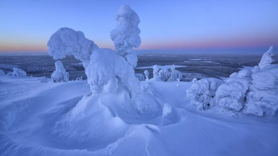 Natural snow statue wallpaper