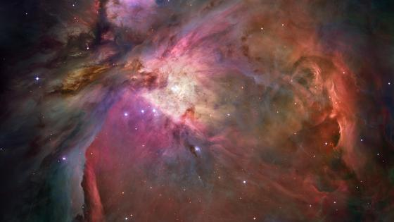 Hubble's Sharpest View of the Orion Nebula wallpaper