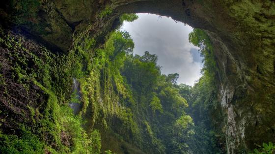 Cavernas del Rio Camuy National Park (Puerto Rico) wallpaper