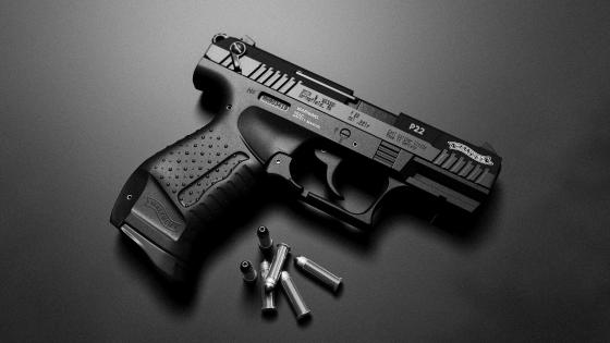 Walther P22 wallpaper