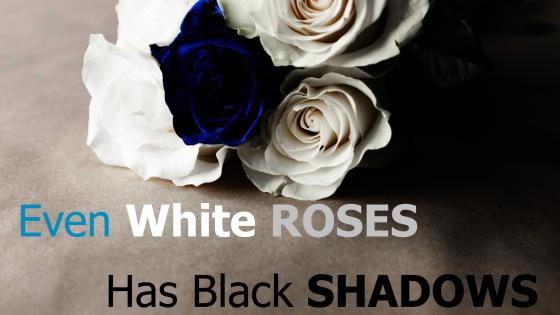 Even white roses has black shadows wallpaper