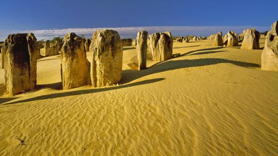The Pinnacles Desert (Nambung National Park) wallpaper