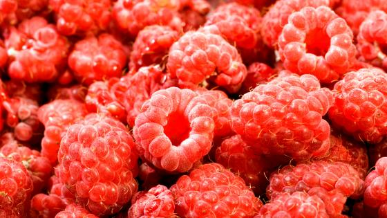 Raspberries wallpaper