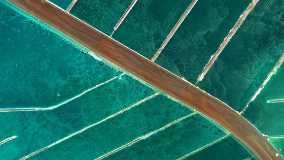Mineral Evaporation Ponds on the Dead Sea wallpaper