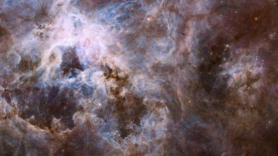 Wide Field NGC 2070 UVIS wallpaper