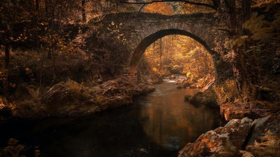 Old stone bridge in the fall forest wallpaper