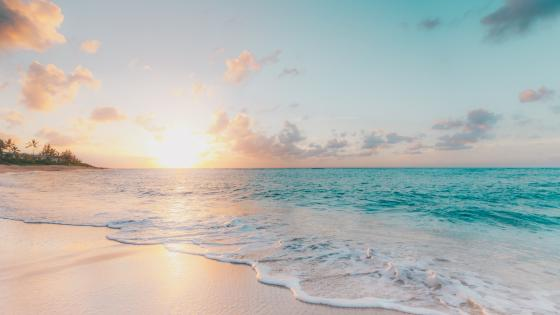 Morning Beach wallpaper