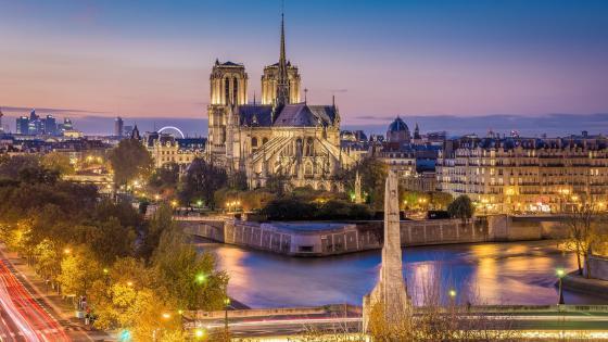 Notre-Dame wallpaper