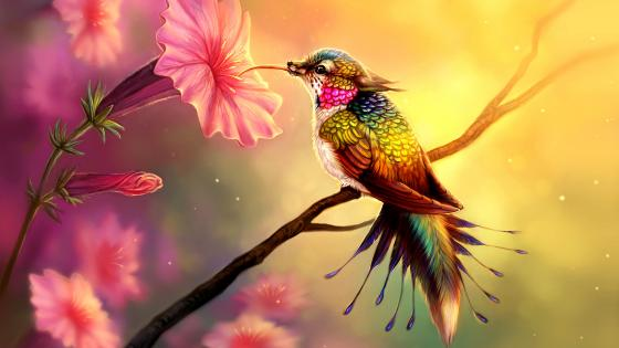 Fantasy hummingbird digital painting wallpaper