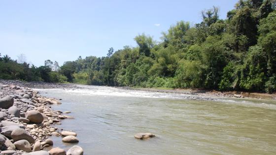 Pangyan river wallpaper