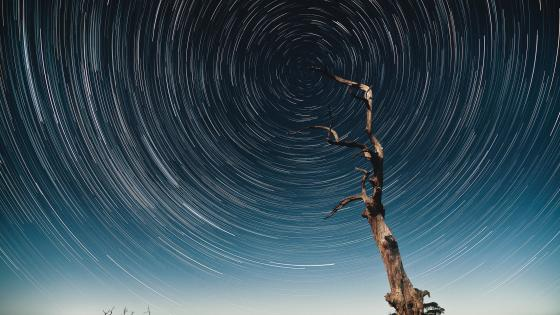 Star trails wallpaper